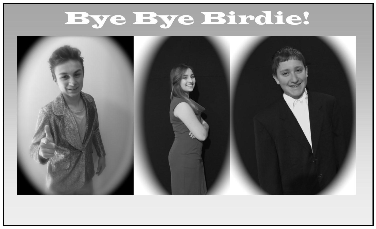 Bye Bye Birdie pic