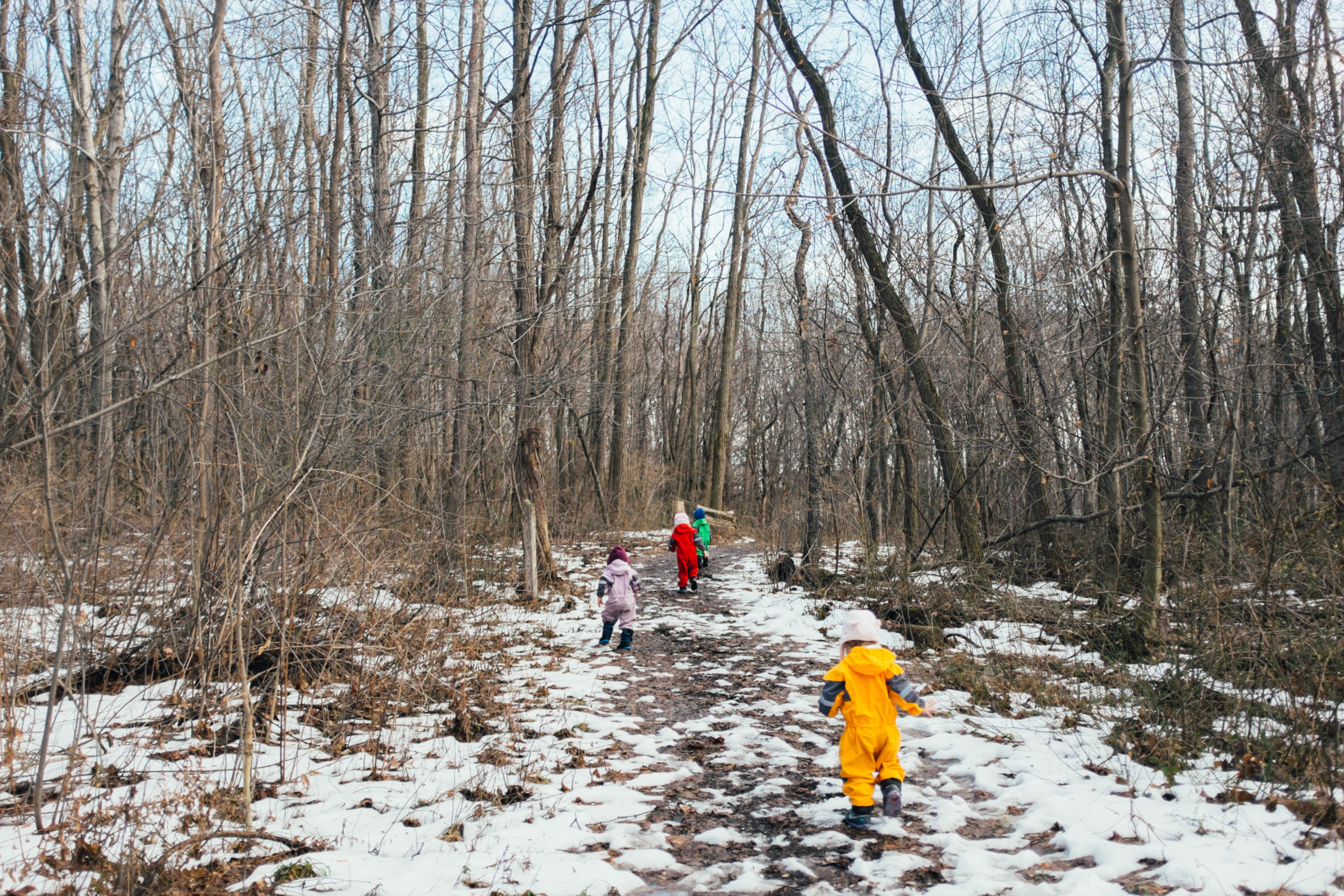YCC Toddlers in Nature: Walking in the Woods