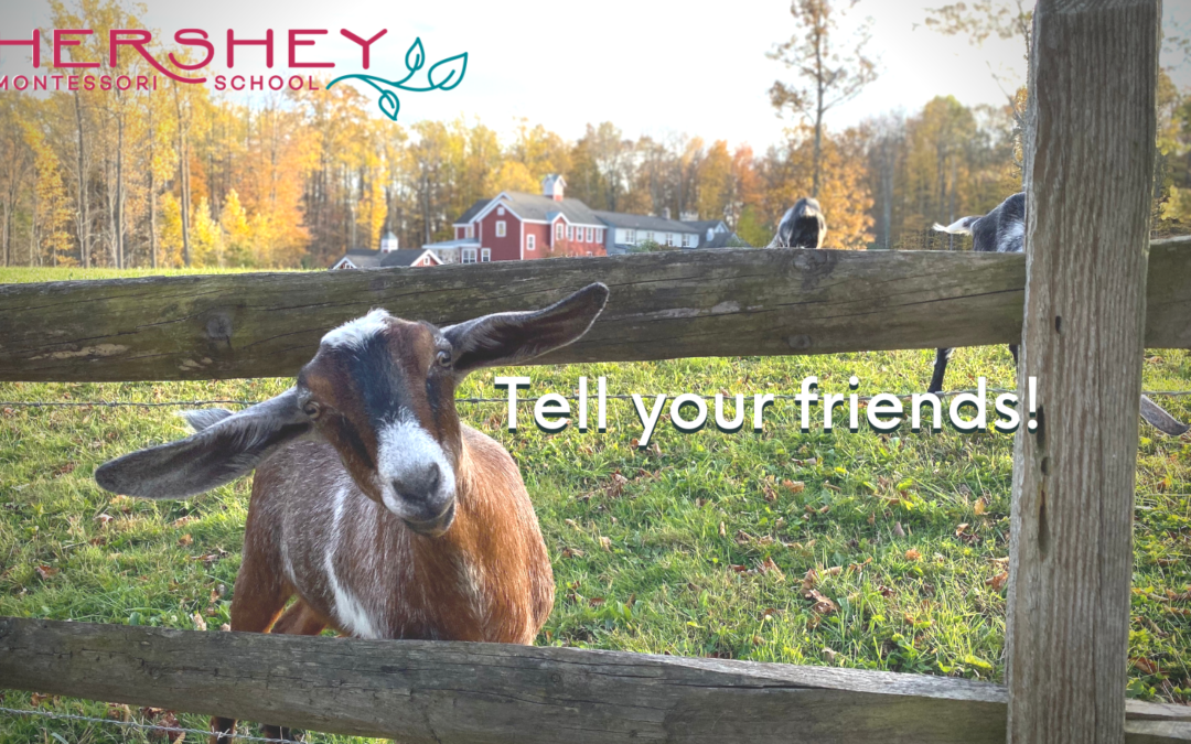 We Invite You To Refer Your Friends and Family!
